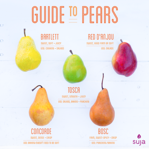 Suja Juice Guide To Pears Infographic