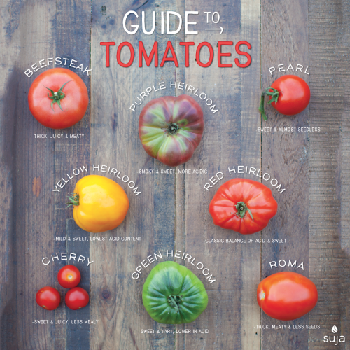 suja juice guide to tomatoes